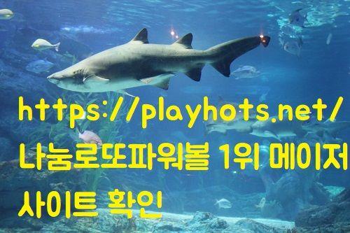 https://playhots.net/ 나눔로또파워볼 1위 메이저사이트 확인